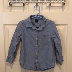 Toddler Boys Button Down Collard Shirt